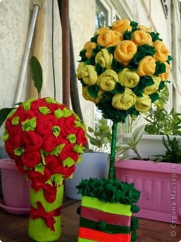 Эти  деревца из роз  сделала моя мама.  Я ей показала только один раз как делать такие розочки. И вот , у нее уже целый розовый сад!                   фото 4