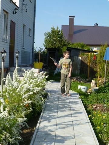 Первые тюльпаны в саду,а это ступня ноги моего сташего внука. фото 13