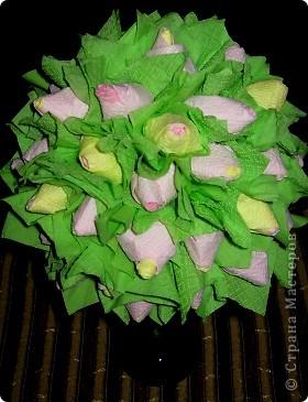 Бутоны роз в бокале фото 1