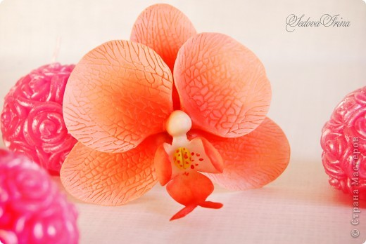 Первый опыт в лепке орхидеи. фото 1