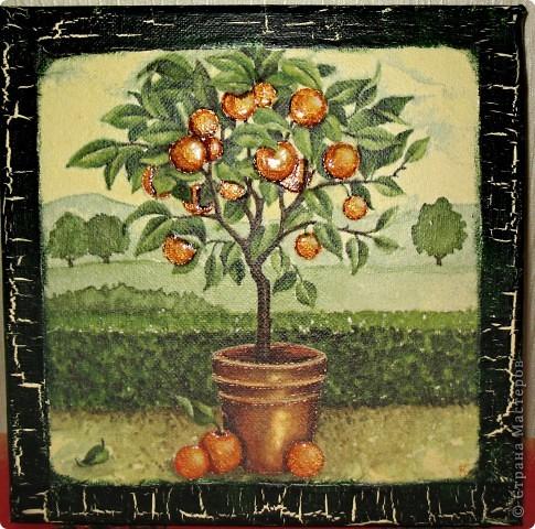 Золотой апельсин! Живопись или обман? фото 1