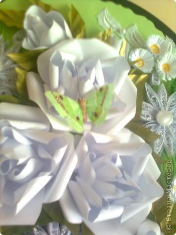 В бяло и зелено фото 3