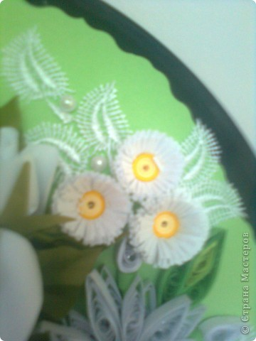 В бяло и зелено фото 6