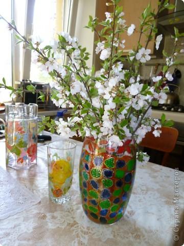 Цветущая ветка вишни. фото 1