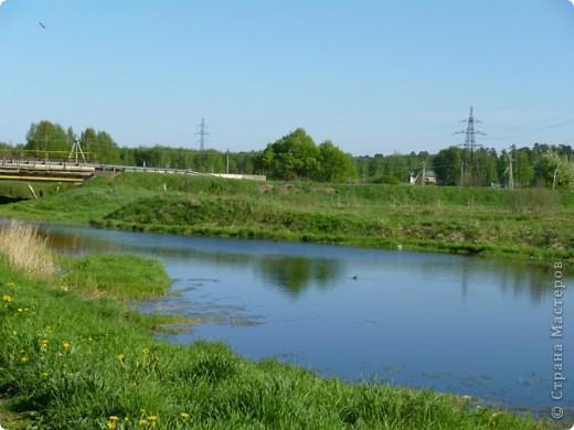 Березы ,уже старые,  стоят   на самой кромке  берега ,у воды фото 7