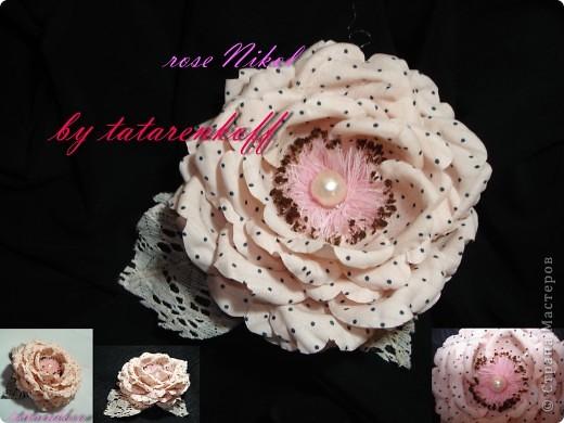 роза Николь фото 1
