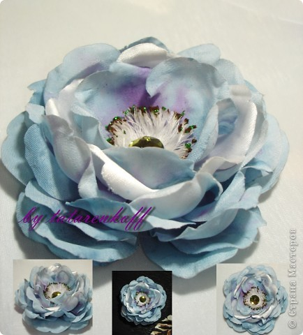 роза Николь фото 4