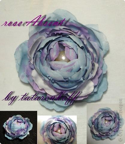 роза Николь фото 3
