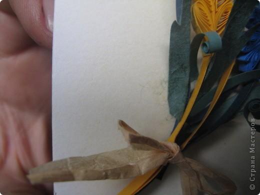 папины руки и васильки фото 3