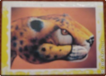 Продолжаю знакомить вас с чудо-работами Гвидо Даниэле. С помощью красок и необыкновенного таланта руки человека превращаются... фото 4