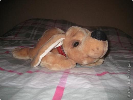 Вот такой песик пошился по выкройке собачки Сонечки, подаренной Стране Мастеров Вдохновленной. фото 2