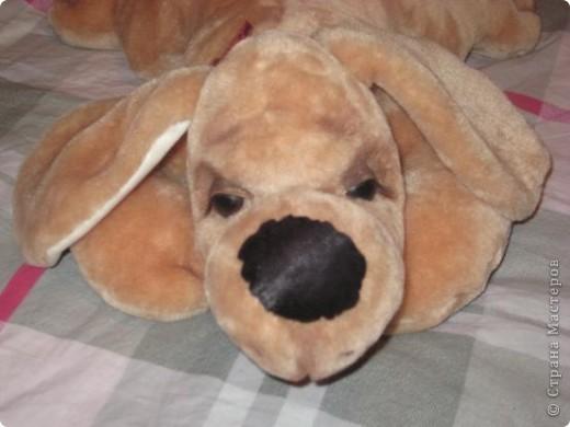 Вот такой песик пошился по выкройке собачки Сонечки, подаренной Стране Мастеров Вдохновленной. фото 1