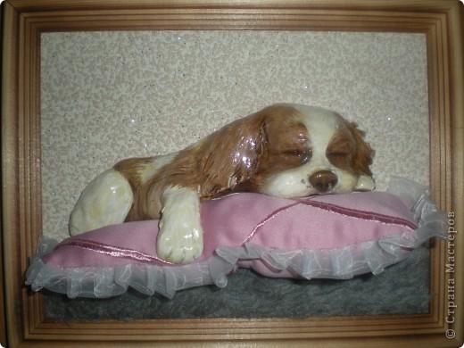 Картина панно рисунок Лепка Спящий щенок Гуашь Тесто соленое Ткань фото 1