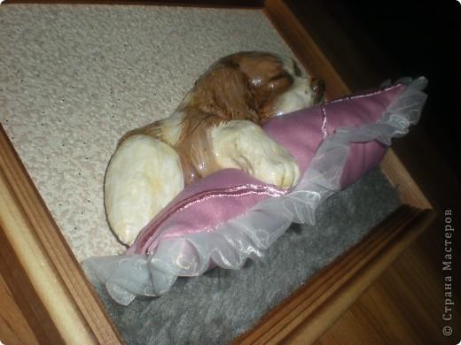 Картина панно рисунок Лепка Спящий щенок Гуашь Тесто соленое Ткань фото 7