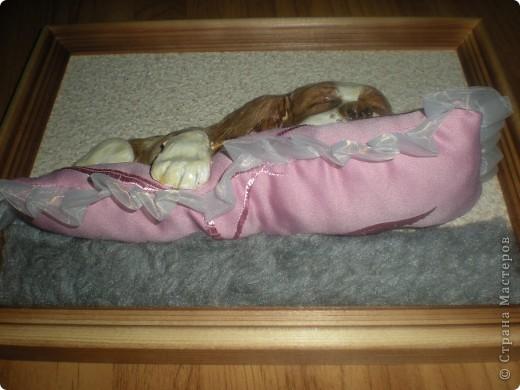 Картина панно рисунок Лепка Спящий щенок Гуашь Тесто соленое Ткань фото 9