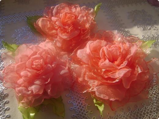 Сегодня чего то на меня нашло,мне захотелось сделать розу.А получилось аж три))) фото 1