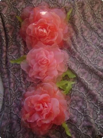 Сегодня чего то на меня нашло,мне захотелось сделать розу.А получилось аж три))) фото 2