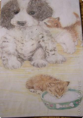 АТС.Кошки.Закрыта фото 3