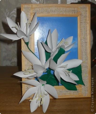 Цветы я подсмотрела вот здесь: http://stranamasterov.ru/node/175953 фото 1