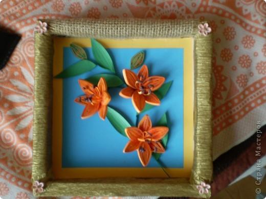 оранжевые лилии фото 1