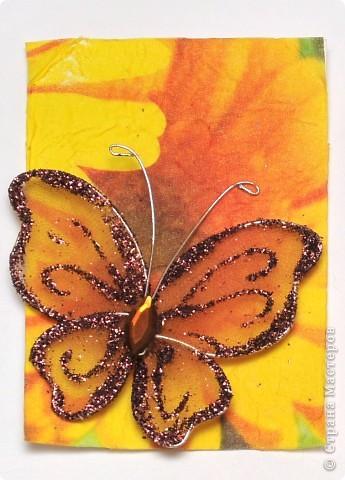 """(закрыта) Карточка Атс """"Бабочки """" фото 2"""