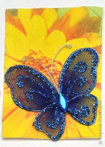 """(закрыта) Карточка Атс """"Бабочки """" фото 4"""