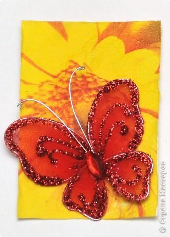 """(закрыта) Карточка Атс """"Бабочки """" фото 5"""