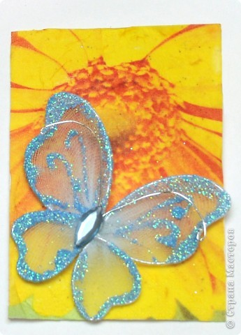 """(закрыта) Карточка Атс """"Бабочки """" фото 6"""
