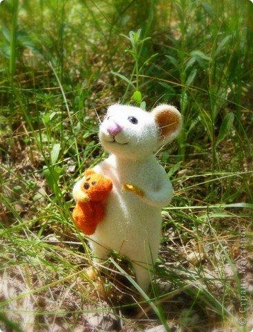 Мышонок Стёпка и его мишка. Мышонок Стёпка, большой любитель сыра и ценитель игрушек, никогда не расстаётся со своей любимой игрушкой:) фото 3