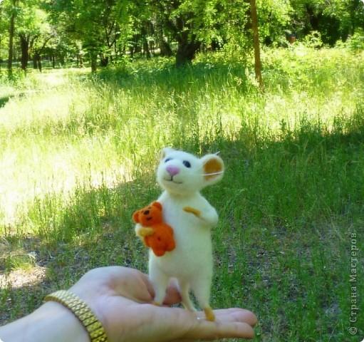 Мышонок Стёпка и его мишка. Мышонок Стёпка, большой любитель сыра и ценитель игрушек, никогда не расстаётся со своей любимой игрушкой:) фото 5