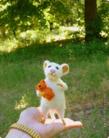 Мышонок Стёпка и его мишка. Мышонок Стёпка, большой любитель сыра и ценитель игрушек, никогда не расстаётся со своей любимой игрушкой:) фото 4