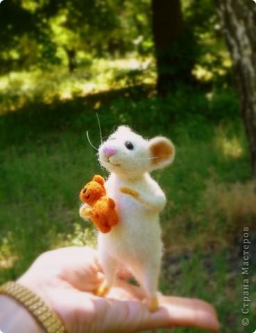 Мышонок Стёпка и его мишка. Мышонок Стёпка, большой любитель сыра и ценитель игрушек, никогда не расстаётся со своей любимой игрушкой:) фото 1