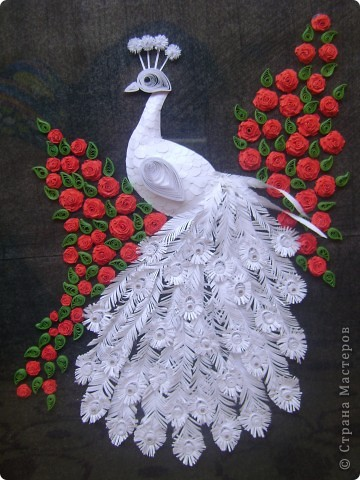 Даже не знала, что есть белые павлины, по красоте не уступают своим известным сородичам. В очередной раз благодарность Ольге Ольшак за МК. фото 1