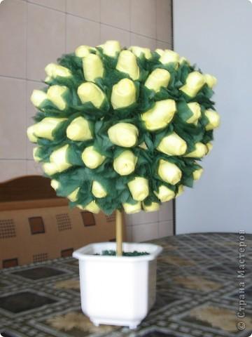 Дерево из роз - 2 фото 2