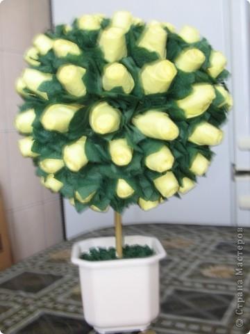 Дерево из роз - 2 фото 1