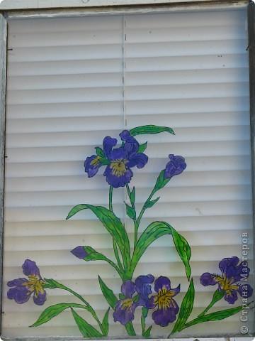 Продолжаю декорировать стекла на террасе в технике витраж. Работа далеко ещё не закончена, но очень уж хочется поделиться красотой (по моему мнению)! Это вид изнутри... фото 7