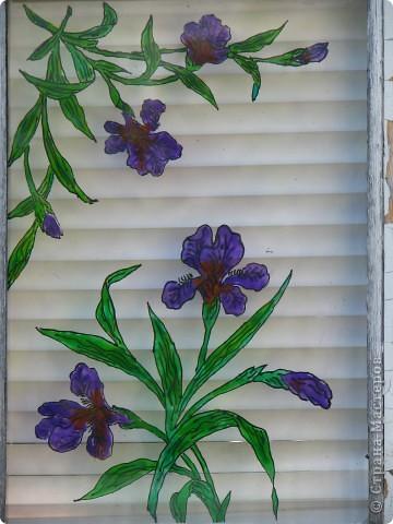 Продолжаю декорировать стекла на террасе в технике витраж. Работа далеко ещё не закончена, но очень уж хочется поделиться красотой (по моему мнению)! Это вид изнутри... фото 5
