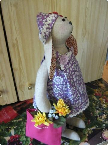И вновь-здравствуйте, мои дорогие! Познакомтесь-это моя модница Кроля :))) фото 6