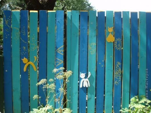 дело трехлетней давности, но вот решила похвастаться. поставили на даче новый забор. в память о старом, из низкого штакетника, выкрашенного в наглый голубой цвет, который лихо противостоял соседским зелено-коричневым крепостям, выкрасили забор в сине-голубую полоску. торцы досок и верхние скосы - ярко желтые. поглядели, порадовались. хорошо, но мало. берем краску, фанеру, лобзик и мужа :) сажаем на забор кошек фото 2