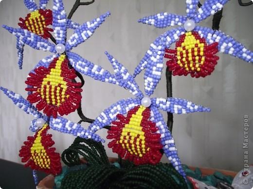Бисероплетение - Орхидея-8 из бисера.