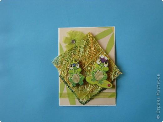 На этот раз серия получилась опять детская и такая зеленая, что в ней завелись лягушки: сплошь царевны. фото 5