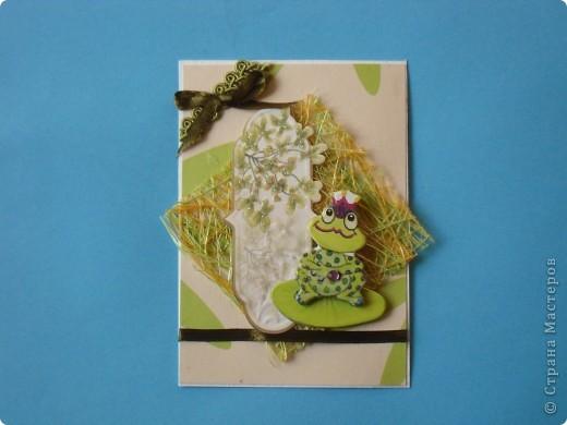 На этот раз серия получилась опять детская и такая зеленая, что в ней завелись лягушки: сплошь царевны. фото 6