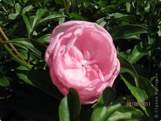 Цветы из ткани 2 фото 4