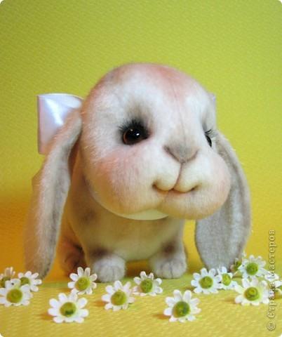 Маленькая, сладенькая, милая девочка, приша познакомиться в вами и поднять вам настоение)))) фото 7