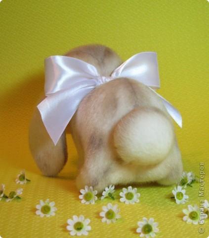 Маленькая, сладенькая, милая девочка, приша познакомиться в вами и поднять вам настоение)))) фото 9