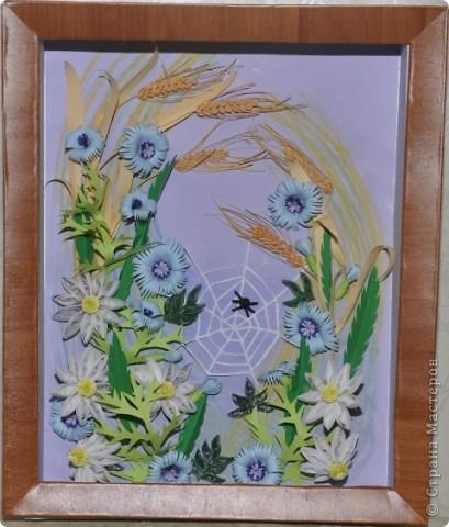 Цветы полевые фото 1