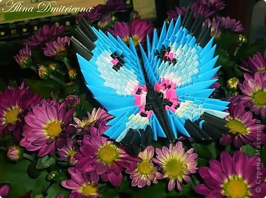 бабочка. делала без схемы, по фото Оригами модульное.