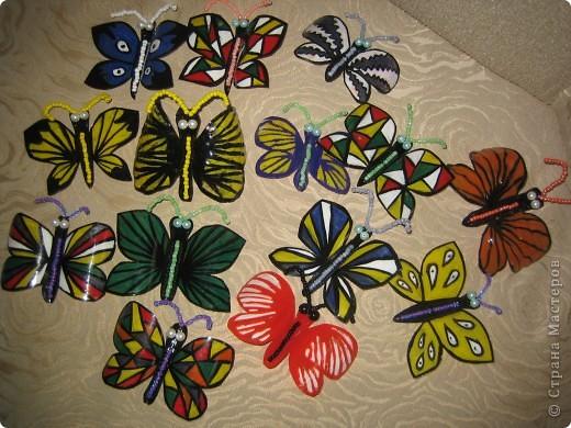 Здесь в СМ живет очень много красивых бабочек. Насмотрелась я на эту красоту и решила поселить у себя этих прекрасных созданий  фото 1