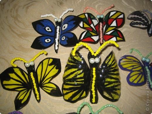 Здесь в СМ живет очень много красивых бабочек. Насмотрелась я на эту красоту и решила поселить у себя этих прекрасных созданий  фото 2