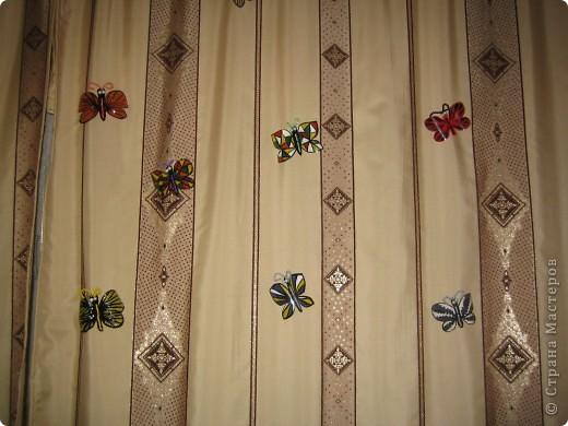 Здесь в СМ живет очень много красивых бабочек. Насмотрелась я на эту красоту и решила поселить у себя этих прекрасных созданий  фото 6